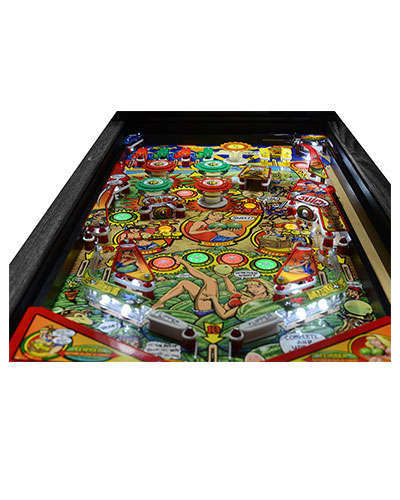 Whoa Nellie Big Juicy Melons Pinball details 1 at Joystix