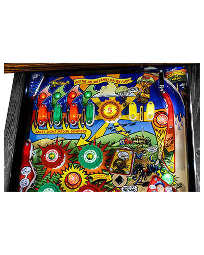 Whoa Nellie Big Juicy Melons Pinball details 5 at Joystix