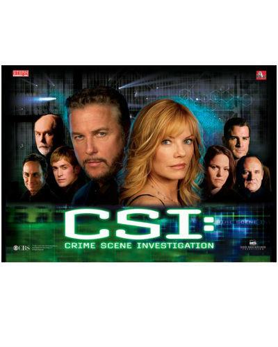CSI PINBALL BACKGLASS AT JOYSTIX